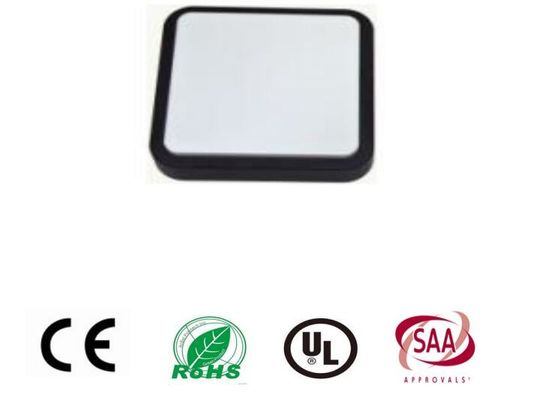 China 10W Square Bulkhead Wall Light / 800lm Outside Bulkhead Lights With  Driver supplier
